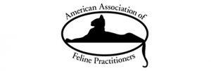 American-Association
